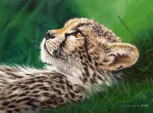 baby cheetah oil painting