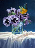 pansies & sunbird by tonkinson-art